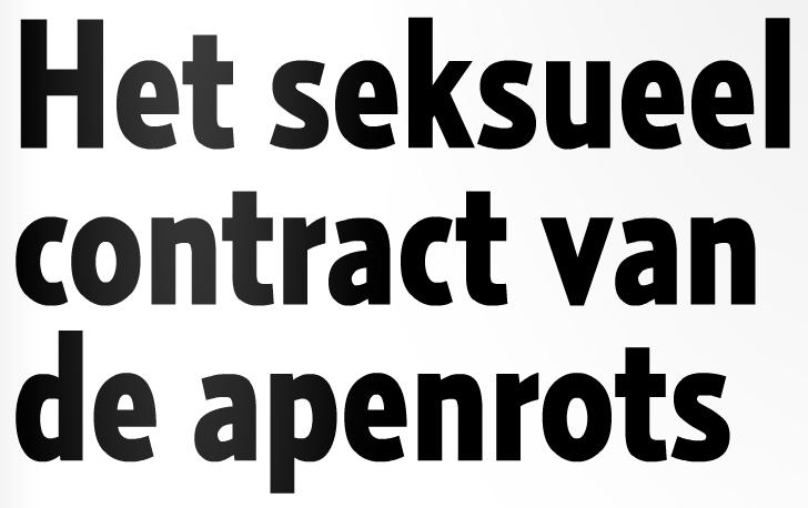 Het seksueel contract van de apenrots